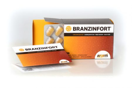 Branzinfort 90